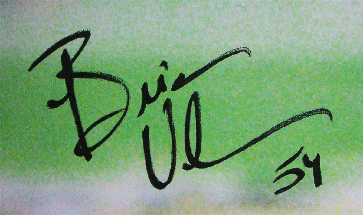 best loved b188a 2856f Brian Urlacher | PSA AutographFacts™