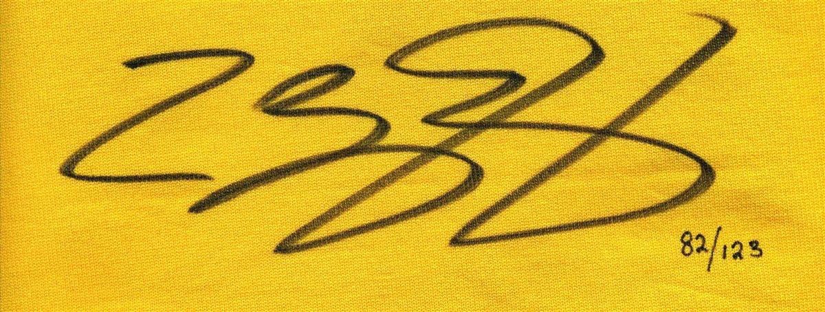 LeBron James | PSA AutographFacts™